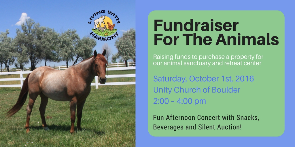 Fundraiser for the Animals 2016